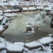 Frozen Frog Rock Garden Pond - frozen water stream from frog's mouth and frozen pond-