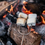 S'mores skewer roasting marshmallows in a campfire.