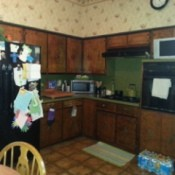 Kitchen Cabinet and Wall Paint Color Advice - cabinets
