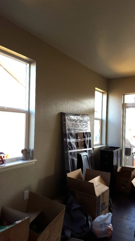 Curtain Color Advice