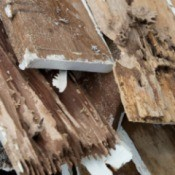 Some house boards damaged by termites.