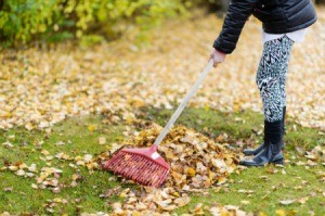 A 14 year old raking leaves.