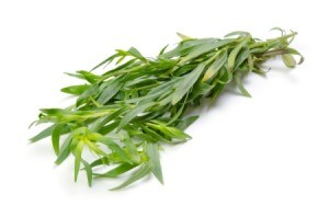 Growing Tarragon