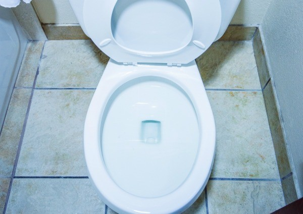 Removing Urine Odors From A Bathroom Thriftyfun
