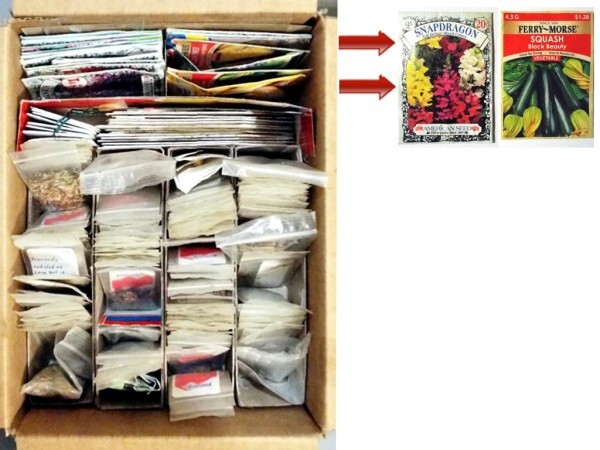 Organizing Seeds - space for seeds as they arrive