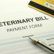 A bill from the veterinarian.