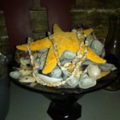 Simple Beach Centerpiece - wide shallow dish with shell collection