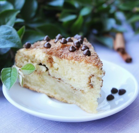 A plate of chocolate chip coffee cake.