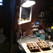 Inexpensive Grow Light - grow light with bent shade
