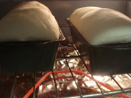 baking loaves in oven