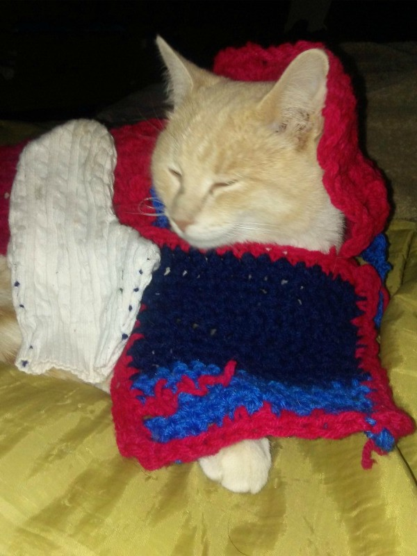 Bailey Loves Dressing Up in Crochet Squares