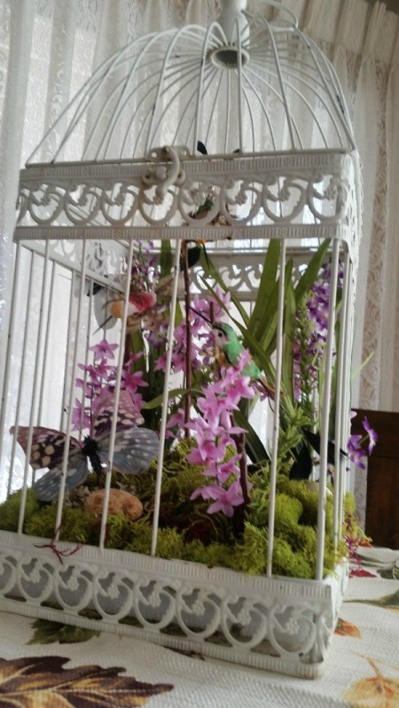 Bird Cage Floral Display