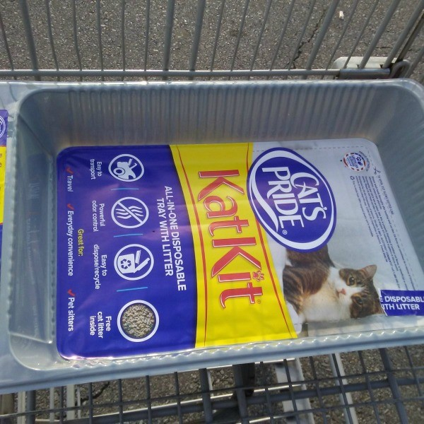 Disposable Litter Boxes for Training Kittens - litter box in grocery cart