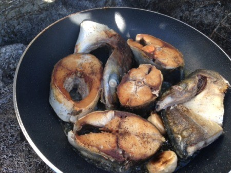 fish chunks cooked in pan