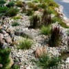 Rock Ground Cover
