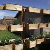 Organic Fence for Vertical Gardening