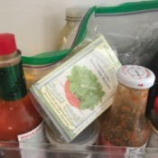 Store Seeds in the Fridge - romaine lettuce seeds in a bag on fridge door with condiments