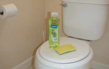 Removing Urine Odors From A Bathroom ThriftyFun - Best odor eliminator for bathroom for bathroom decor ideas