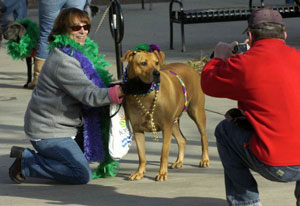Rosco at Mardi Growl