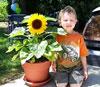 Keep A Smile On A Little Gardener's Face