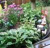 Garden In Ontario