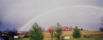 Rainbow on the Farm