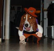 Sadie the Cowgirl