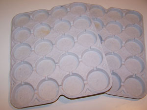 Reuse Packing Trays For Paint Or Beads