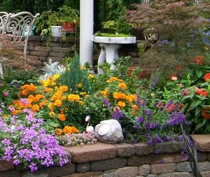 Garden: Plant Annuals Close Together