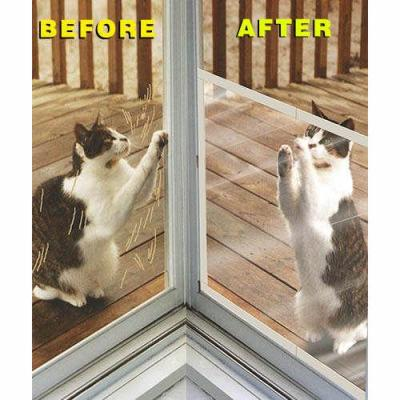 Keeping Cats From Scratching Screen Doors Thriftyfun