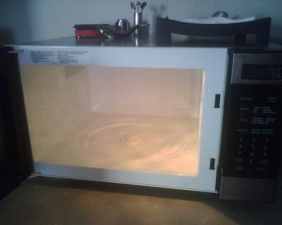 RE: Removing Burnt Smell From Microwave
