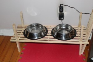 photo of Dog Dishes on a slat shoe shelf