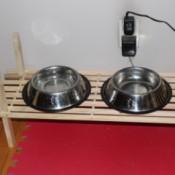 photo of Dog Dishes on a slat shoe shelf