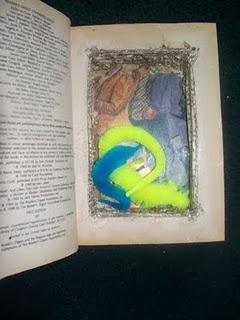 photo of secret book safe