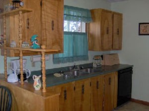 View of kitchen sink and surrounding cupboards
