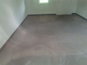 Photo of empty carpeted room