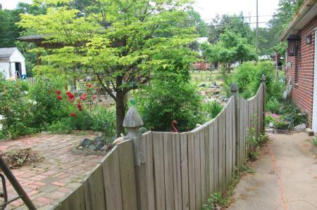 My Backyard Fence