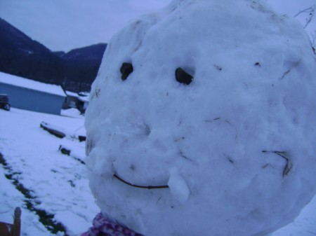 A close up of a snowman's face.