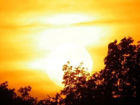 Bright golden sunset