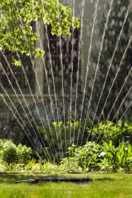 Watering Solutions