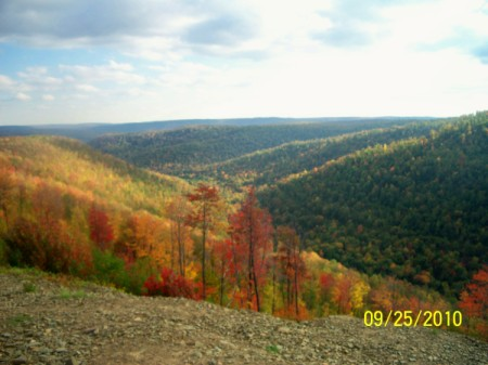 The mountains in Pennsylvania with Autumn color.