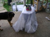 A plastic storage container covered with a white cloth and used as an outdoor table.