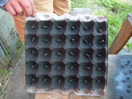 Egg carton used to hold screws for painting