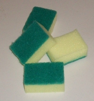 Photo of sponges cut in half.