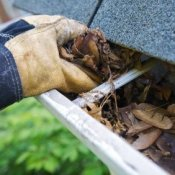 Hand cleaning leaves out of rain gutters 2