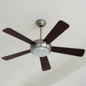 Photo of a ceiling fan.