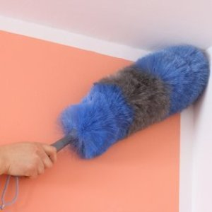 Someone dusting the corner of a room with a duster.
