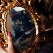 A tortoiseshell cat reflected in an ornate mirror.