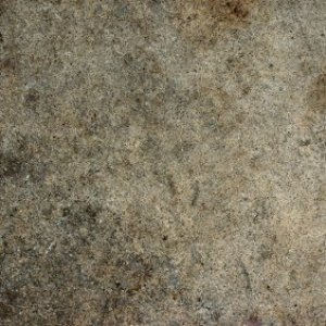 Up close photo of a dirty driveway.