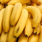 A pile of banana bunches.